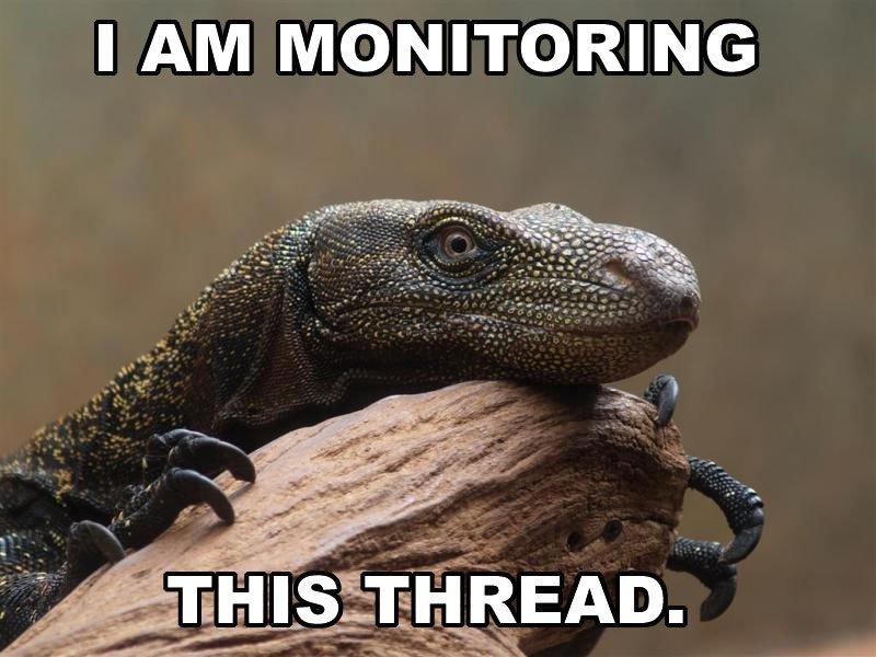i-am-monitoring-this-thread.jpg