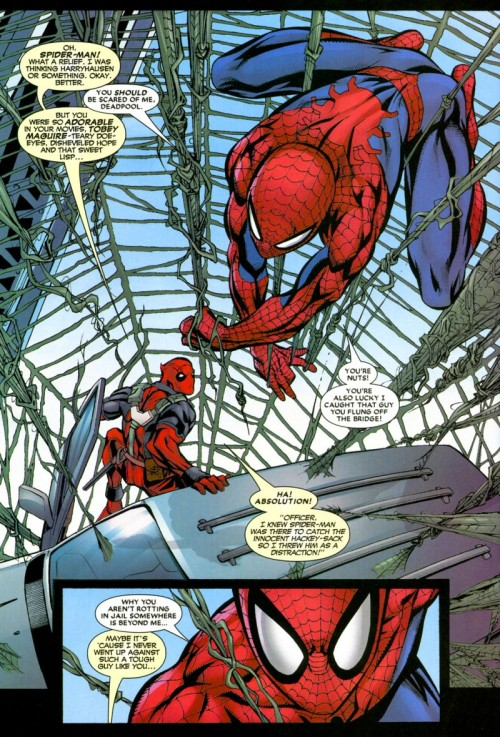 spidey_deadpool_big-500x737.jpg
